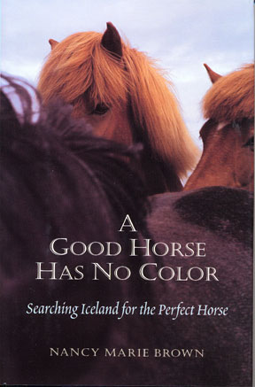 Good Horse Has No Color