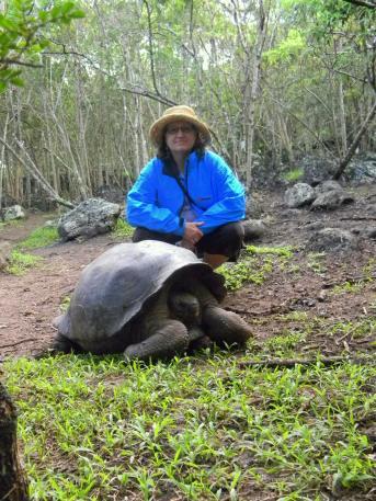 Galapagos 100