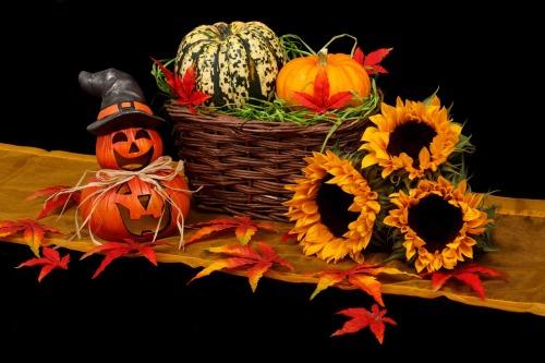 autumn-20461_1280