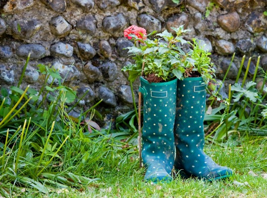 wellington-boots-76867_1280