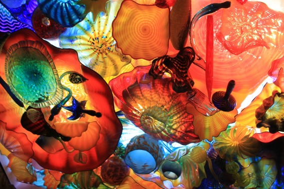 chihuly-223254_1280