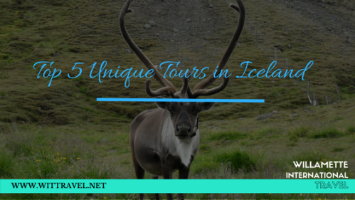 iceland unique tours