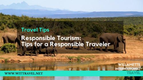 elephant responsible tourism