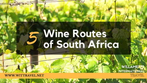 5 wine routes south africa
