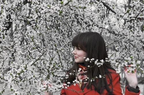 spring-1003598_640