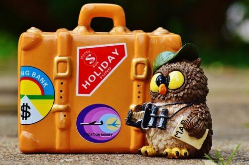 owl-993401_640