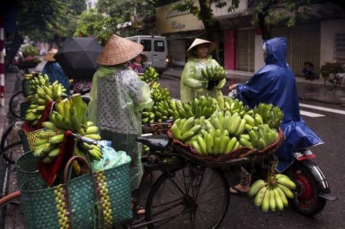 hanoi-street-food-3559156_640.jpg